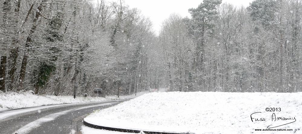Yvelines sous la neige ...